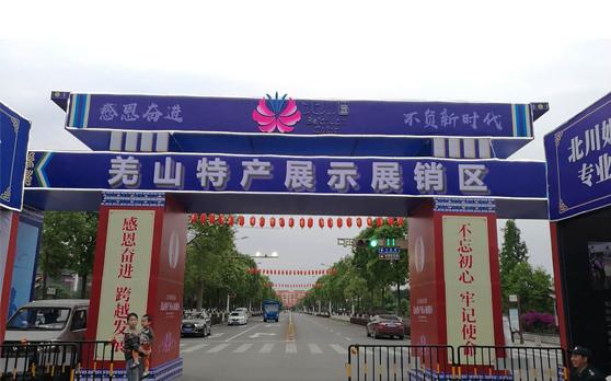 """绵阳市2018年感恩文化节暨纪念""""5.12""""特大地震十周年活动"""